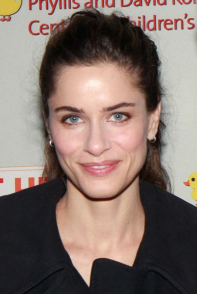 Amanda Peet Movies Wikipedia pic